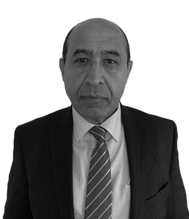 د. حميد الكفائي